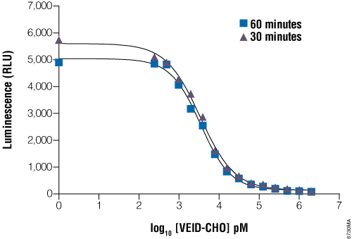 Determination of IC50 values with the Caspase-Glo 6 Assay.