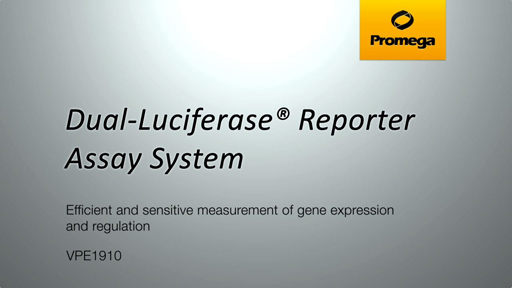 Dual Luciferase Reporter Assay System Video